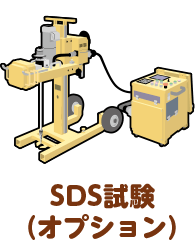 SDS試験(オプション)