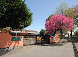 しま幼稚園(徒歩約5分)