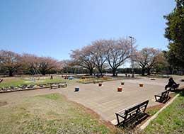 藁田島公園(徒歩約7分)