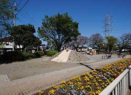 一本松公園(徒歩約5分)