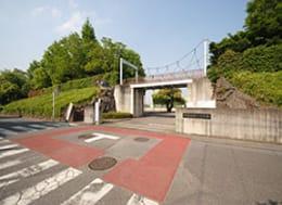 中丸スポーツ広場(徒歩10分)