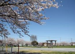山ノ内公園(徒歩4分)