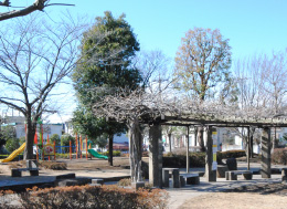 松芝公園(徒歩3分)