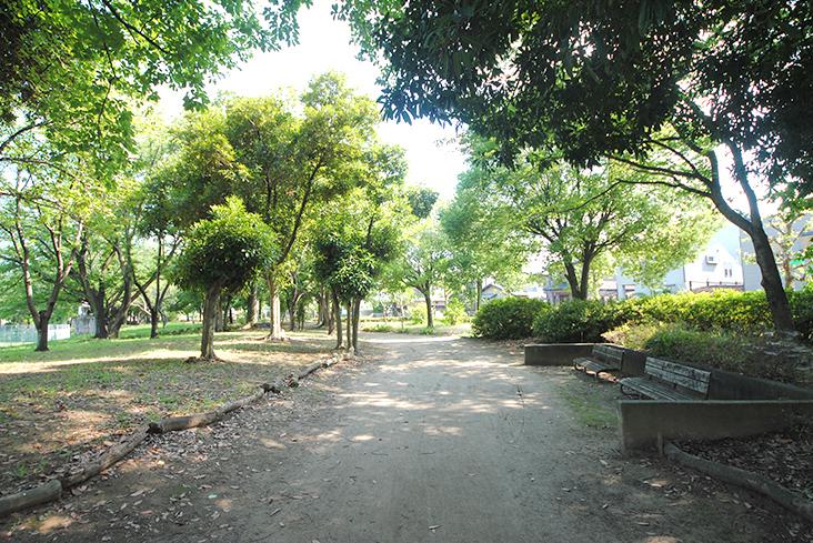 青葉公園(徒歩3分)