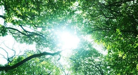 エコ住宅に欠かせない太陽光発電のシステムの必要性